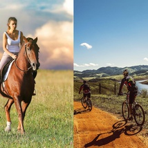 Bike tours and horse rides