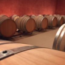 Tour of the winecellar Montonale