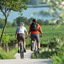 Towards the Solferino tower, bicycle tour through vineyards and moraine hills to discover the history