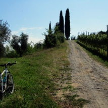 Discover Valtenesi by bike